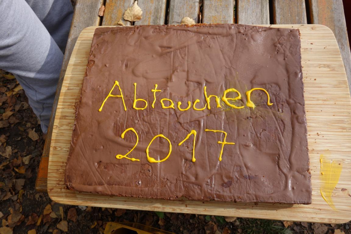 Abtauchen am Alten Rhein